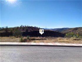 Image No.3-Terre à vendre à Cuevas Bajas