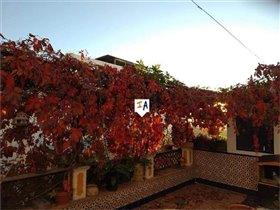 Image No.8-Maison de 3 chambres à vendre à Rute