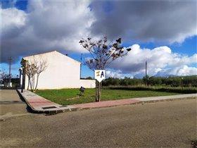 Image No.5-Terre à vendre à Salinas