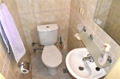 8--downstairs-wc