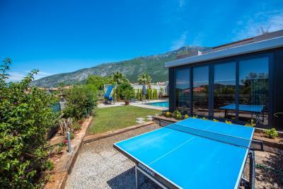 16--table-tennis-in-garden