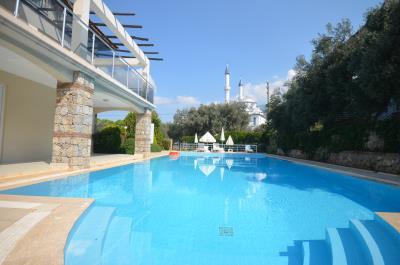 2--communal-pool