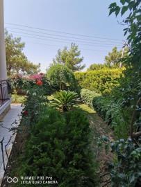 Enclosed-gardens