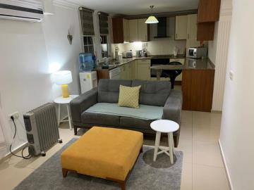 16--apartment-lounge-and-kitchen
