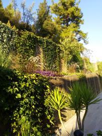 18a--gardens