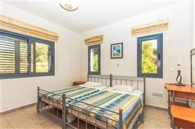 Image No.10-Villa de 4 chambres à vendre à Ayia Marina