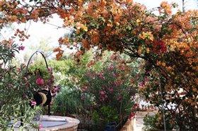 Image No.4-Villa de 5 chambres à vendre à Crète