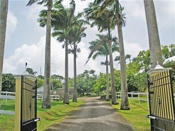 lion-castle-plantation-house-cb000117-4