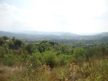 1. Land for sale