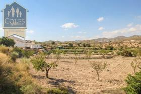 Image No.21-4 Bed Cortijo for sale