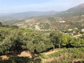La Zagaleta, Plot
