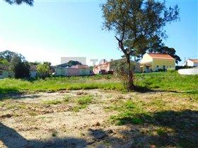Image No.6-Terrain à vendre à Nadadouro
