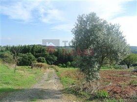 Image No.2-Maison de 2 chambres à vendre à Alcobertas