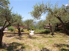 Image No.6-Villa / Détaché de 5 chambres à vendre à Civitella Messer Raimondo