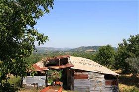 Image No.21-Maison de 4 chambres à vendre à Rapino