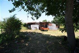 Image No.6-Maison de 4 chambres à vendre à Rapino