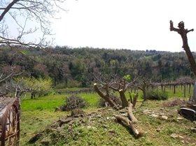 Image No.12-Villa / Détaché de 3 chambres à vendre à Orsogna