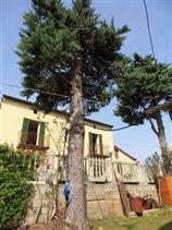 Image No.1-Maison de 3 chambres à vendre à Orsogna