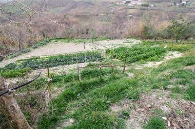 abruzzo-property317