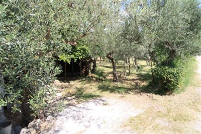 a-home-in-italy2741