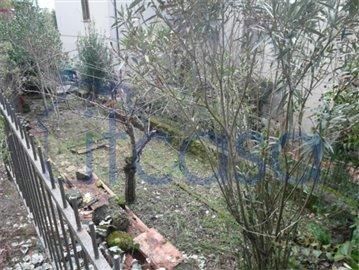 19-02-20-A234-ext-garden