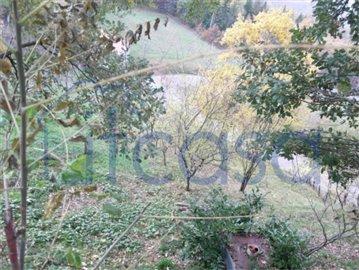 19-09-04-CM244-garden