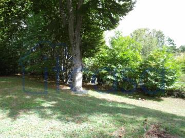 19-10-24-CM249-garden-e