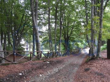 19-10-24-CM249-ext-view-frm-road2