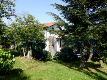 19-11-15-CM247-ext-garden