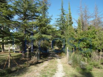 19-11-07-S246-Ext-driveway