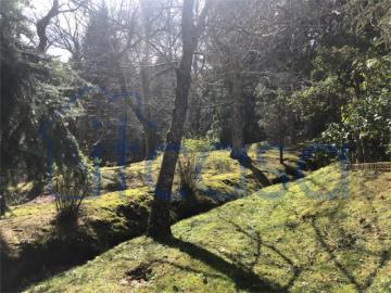 20-04-17-CM254-ext-garden3