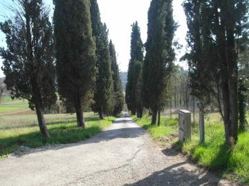 C259-Ext-road-to-property