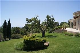 Image No.3-Finca de 5 chambres à vendre à Santanyí