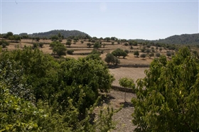 Image No.13-6 Bed Finca for sale