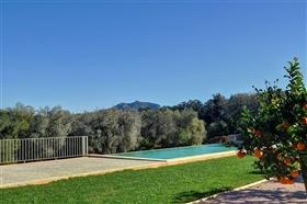 Image No.8-Finca de 5 chambres à vendre à Majorque