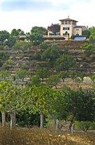 Image No.35-Finca de 6 chambres à vendre à Majorque
