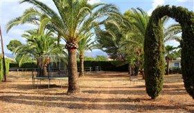 Image No.36-Finca de 6 chambres à vendre à Palma de Mallorca