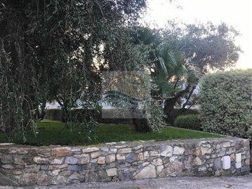 a-villa-in-vendita-a-vallebona-12