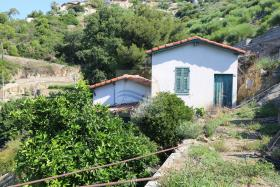 Bordighera, Cottage