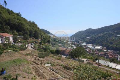 a-villa-in-vendita-vallecrosia-5