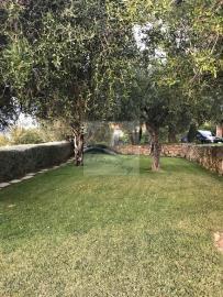 a-villa-in-vendita-a-vallebona-4