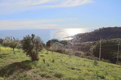 Terreno-con-progetto-vendita-bordighera-3