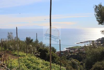 Terreno-con-progetto-vendita-bordighera-4