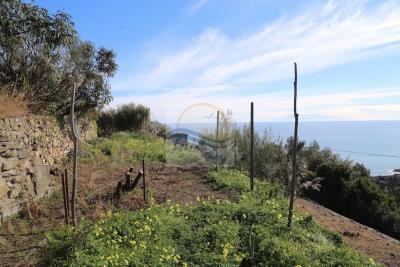 Terreno-con-progetto-vendita-bordighera-8