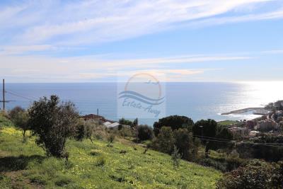 Terreno-con-progetto-vendita-bordighera-9