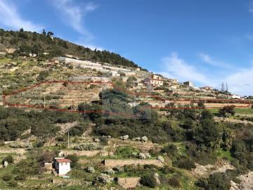 Terreno-con-progetto-vendita-bordighera-10