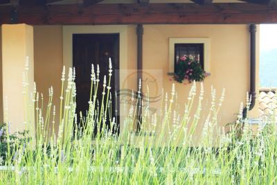 a-villa-in-vendita-a-camporosso-8