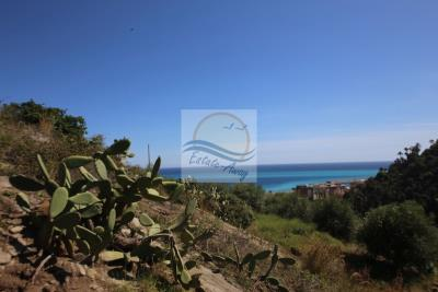 A-TERRENO-BORDIGHERA-IV10702