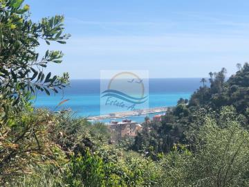 A-TERRENO-BORDIGHERA-IV10703