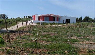 Image 4 of 29 : 3 Bedroom Villa Ref: AV2091